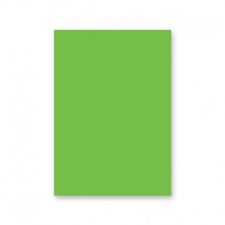 5 feuilles de papier cartonné A4 Vert tropique 300 gr/m²