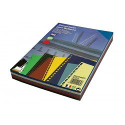 Assortiment couleurs de 100 Dos de Couverture Grain cuir A3