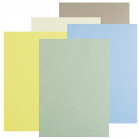 Assortiment pastel de 100 Dos de Couverture Grain cuir A4